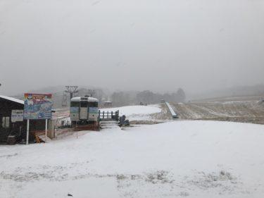 12月14日、待望の自然雪が…